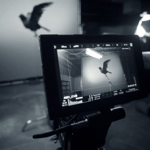 behind the scenes, green screen, red epic, short film